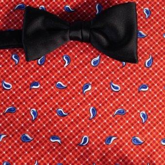 Schleife-Fliege Rot, Weiß, Blau, Terracotta - Paisley, Dessin 200142
